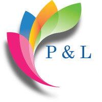 P & L Associates INC
